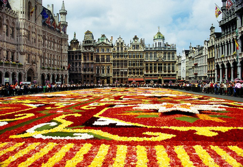 Belgium Floral Display in the Center of the City