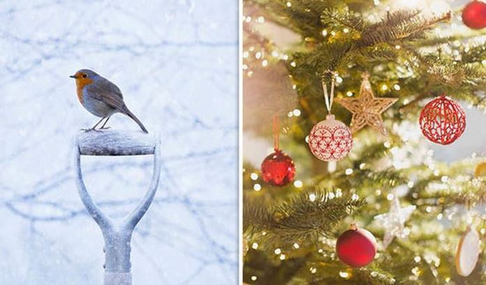 CHRISTMAS ROBIN IN THE SNOW & CHRISTMAS DECORATIONS