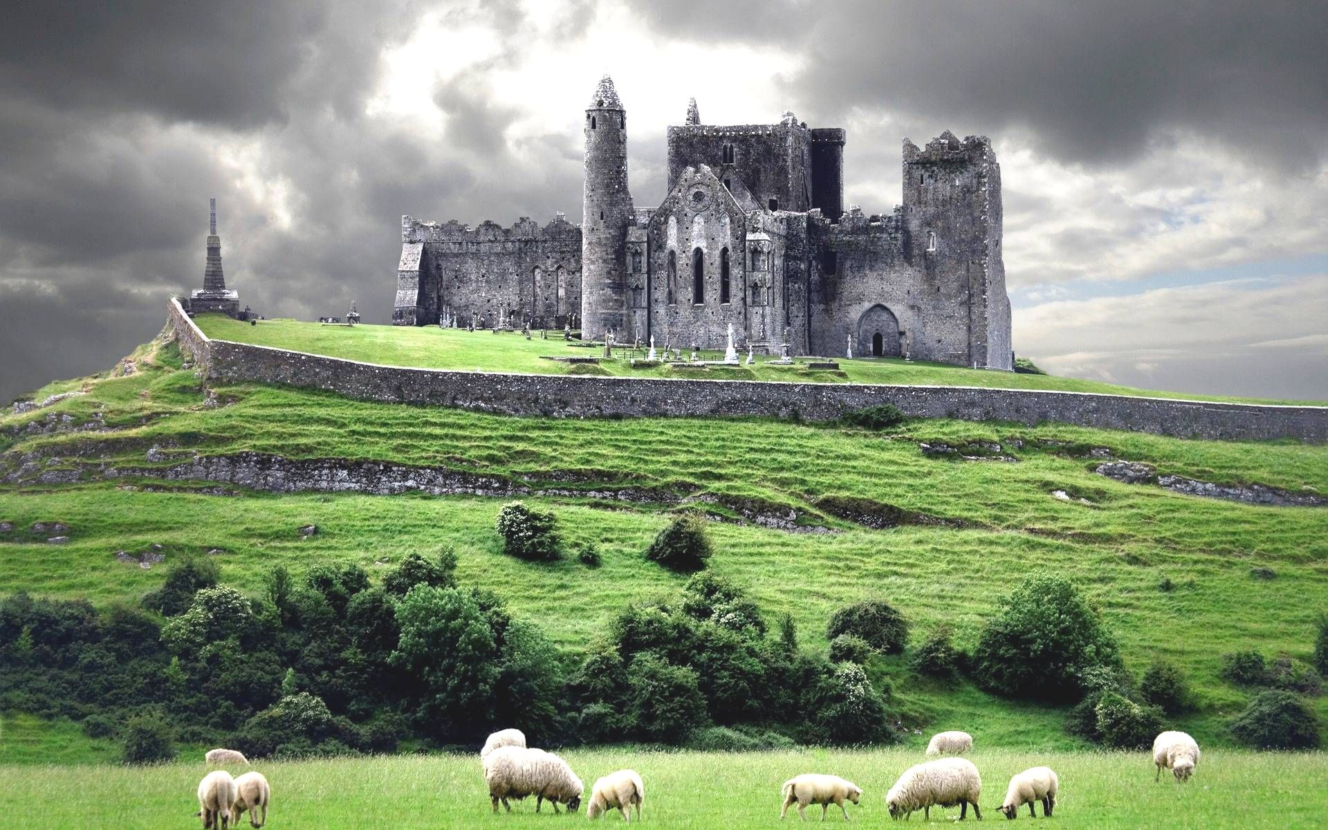 Castle in Eire with Sheep Grazing in a Field
