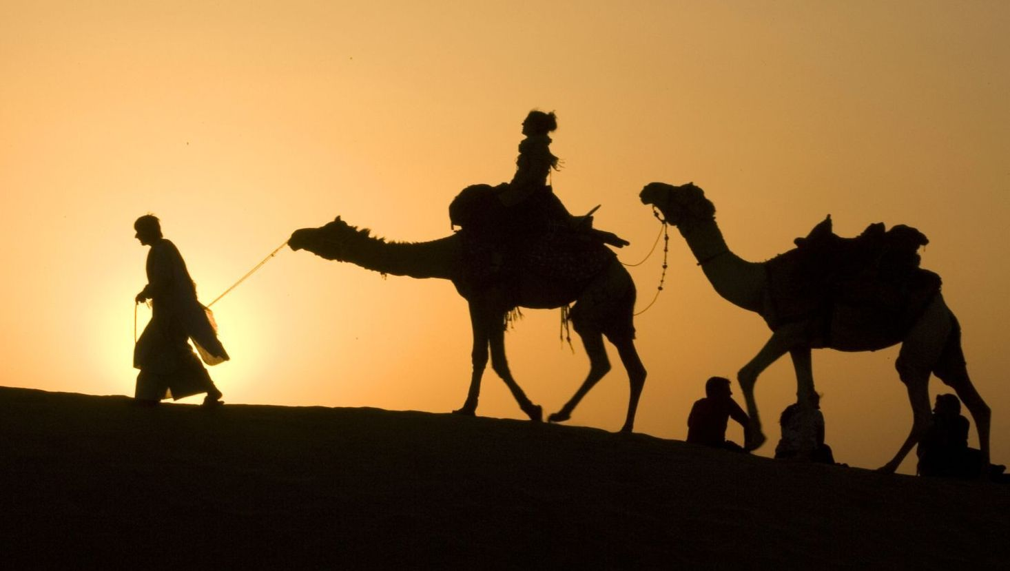 Riding a Camel in India