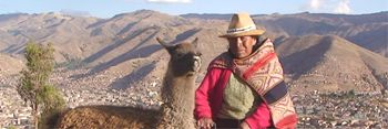 Farmer with his Llama in the Mountains in Perú
